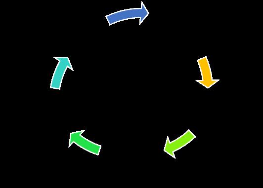 Ciclo de Vida del Contenido